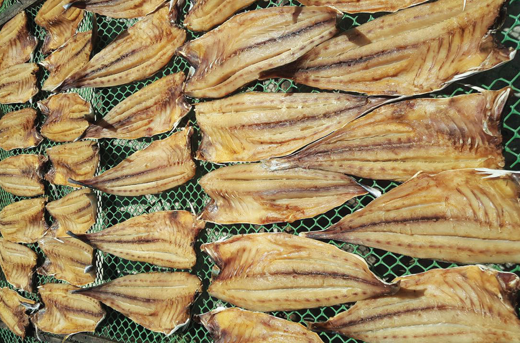 Dried queenfish original vietnam