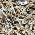 Dried White Anchovy by Sunshine original vietnam