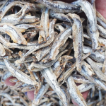 Dried boiled gray anchovy original vietnam