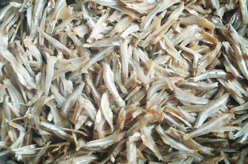 Dried boiled white anchovy fillet original vietnam