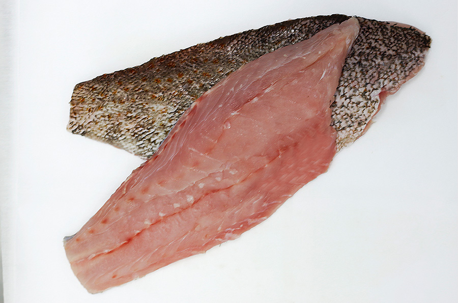 Grouper-Fillet export from vietnam