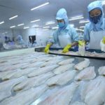 seafood export from vietnam